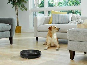 iRobot Roomba 671/675 Saugroboter hund